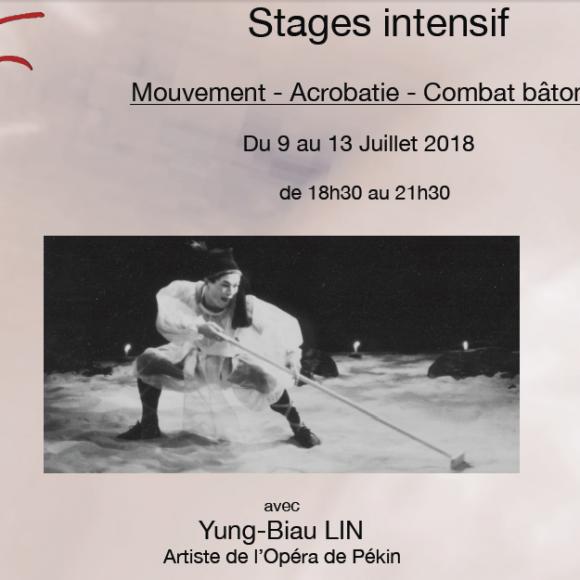 Du 09 au 13-7-2018 – Stage «Mouvement/Acrobatie/bâton»