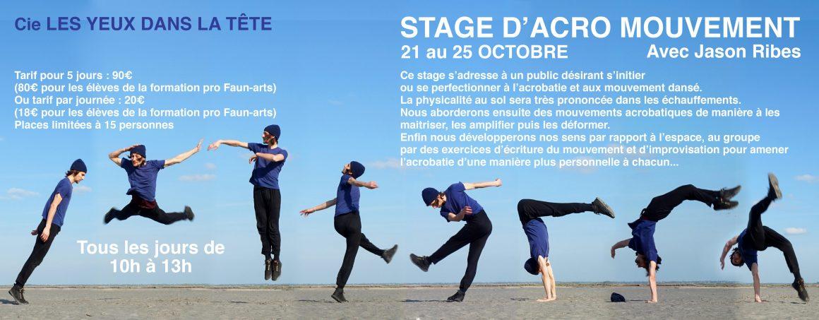 Stage – Acrobatie / mouvement – Jason Ribes
