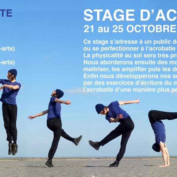 Stage – Acrobatie / mouvement – Jason Ribes