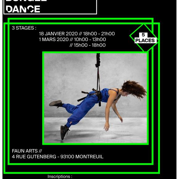 Stage – Danse aérienne avec bungees #3